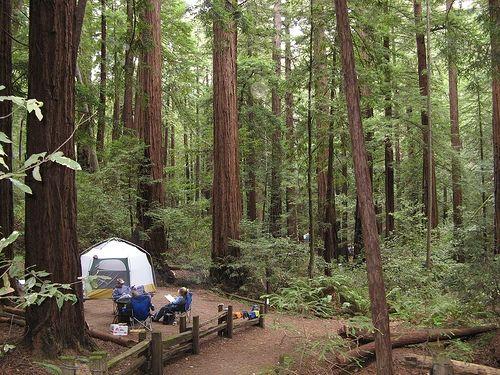 Butano State Park Pescadero California Our family camping spot