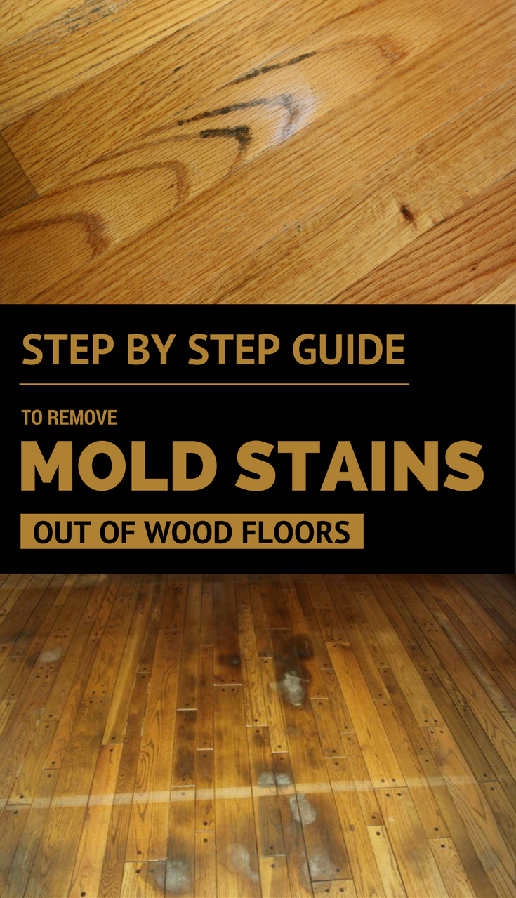 It Is A Tedious Workaround But You Can Do Keep Reading And See My Step By Guide To Remove Mold Stains Out Of Wood Floors