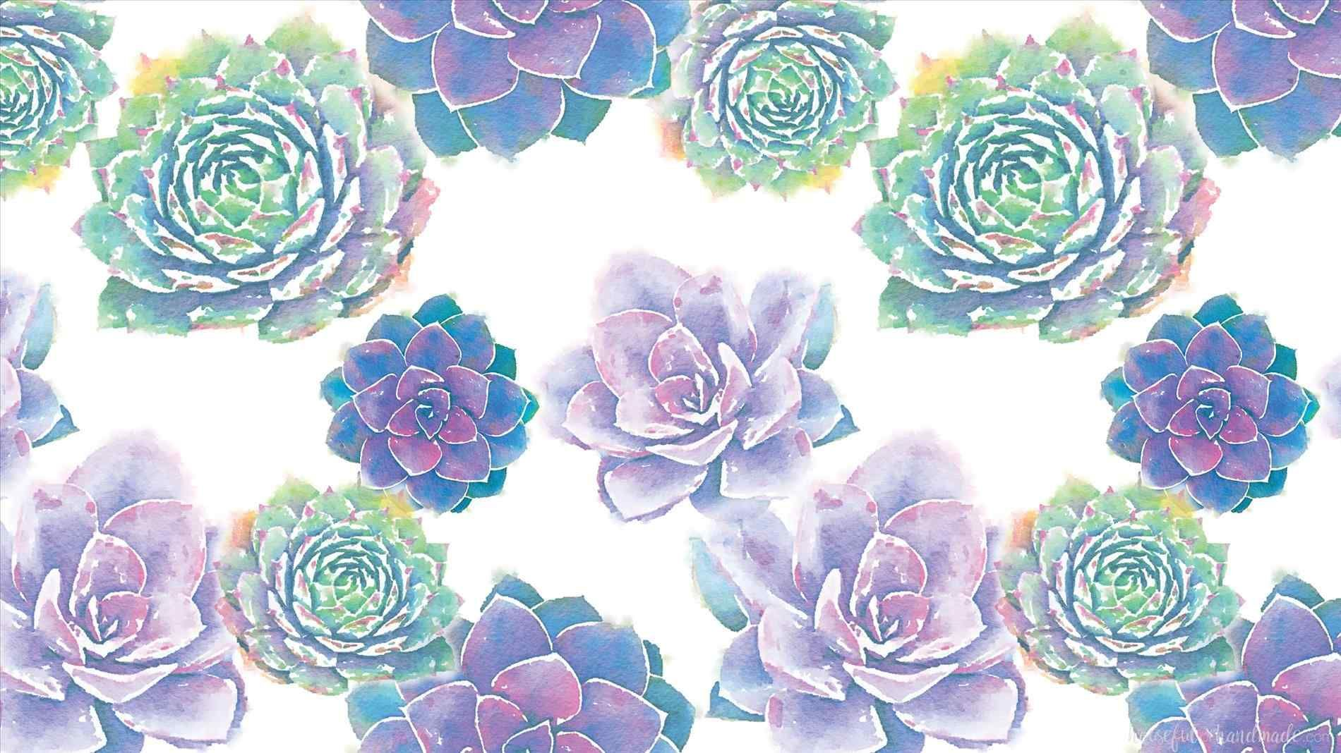 Image Result For Cute Succulent Wallpapers Succulents Wallpaper