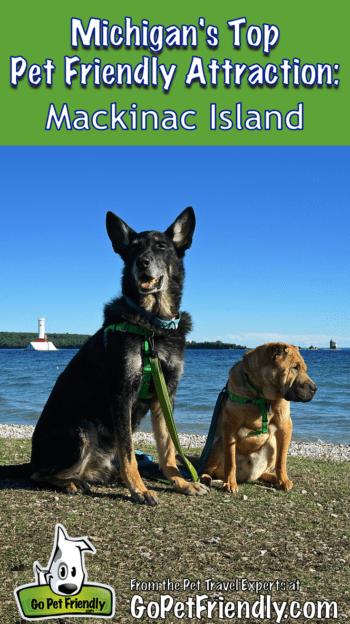 Michigan S Top Pet Friendly Attraction Mackinac Island Mackinac Island Road Trip With Dog Michigan Road Trip
