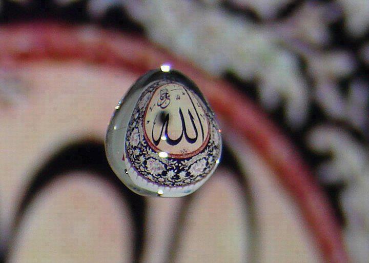 Faydali Bilgiler Sitesi Bilgidem Bilgi Vakti Turquoise Ring Rings For Men Allah Loves You