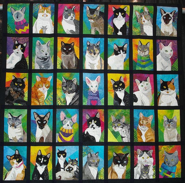amazing cat quilt. My cat is18 years old and she sleeps on my shoulder every night. This has inspired me to make a cat quilt (from photos) for when she doesn't.
