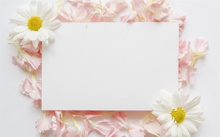 ورقة بيضاء Flower Doodles Collage Background Flower Printable