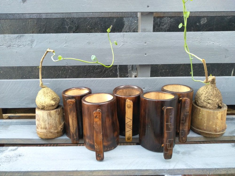 Giant And Small Bamboo Made Things Bamboo Crafts Bamboo Candle