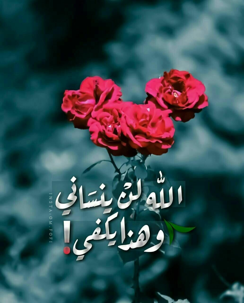 لن ينساني الله وكفى بالله وكيلا Arabic Quotes Love Quotes Wallpaper Beautiful Arabic Words