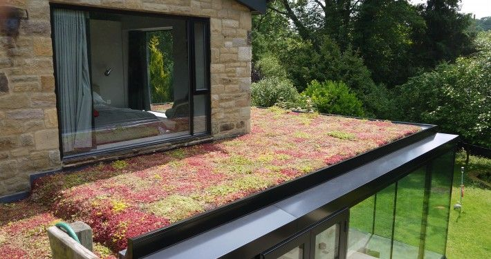 Bon Diy Green Roof Extension Uk   Google Search