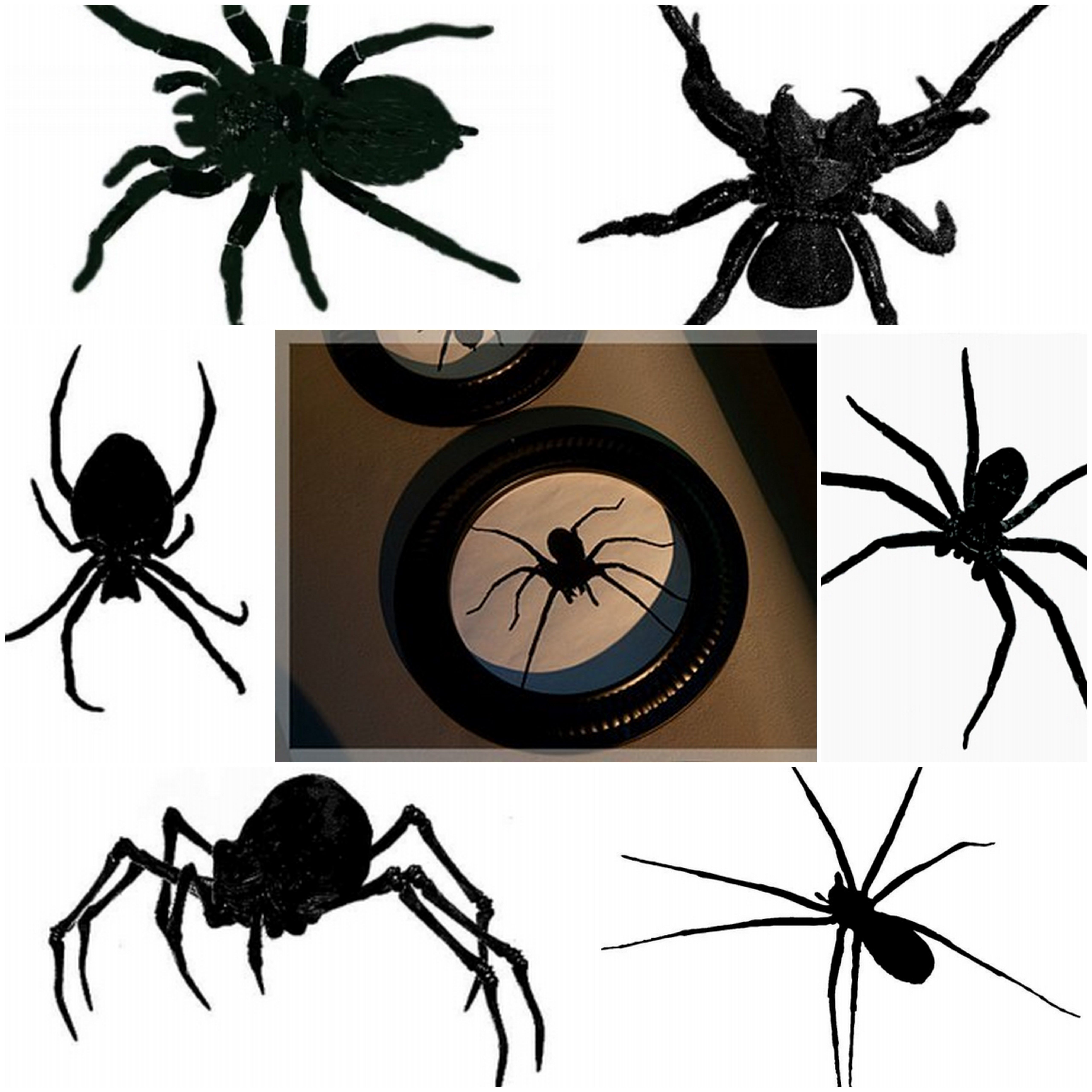 Diy Halloween Stove Pipe Frames From Lowes Arachnophobia Frames Worth