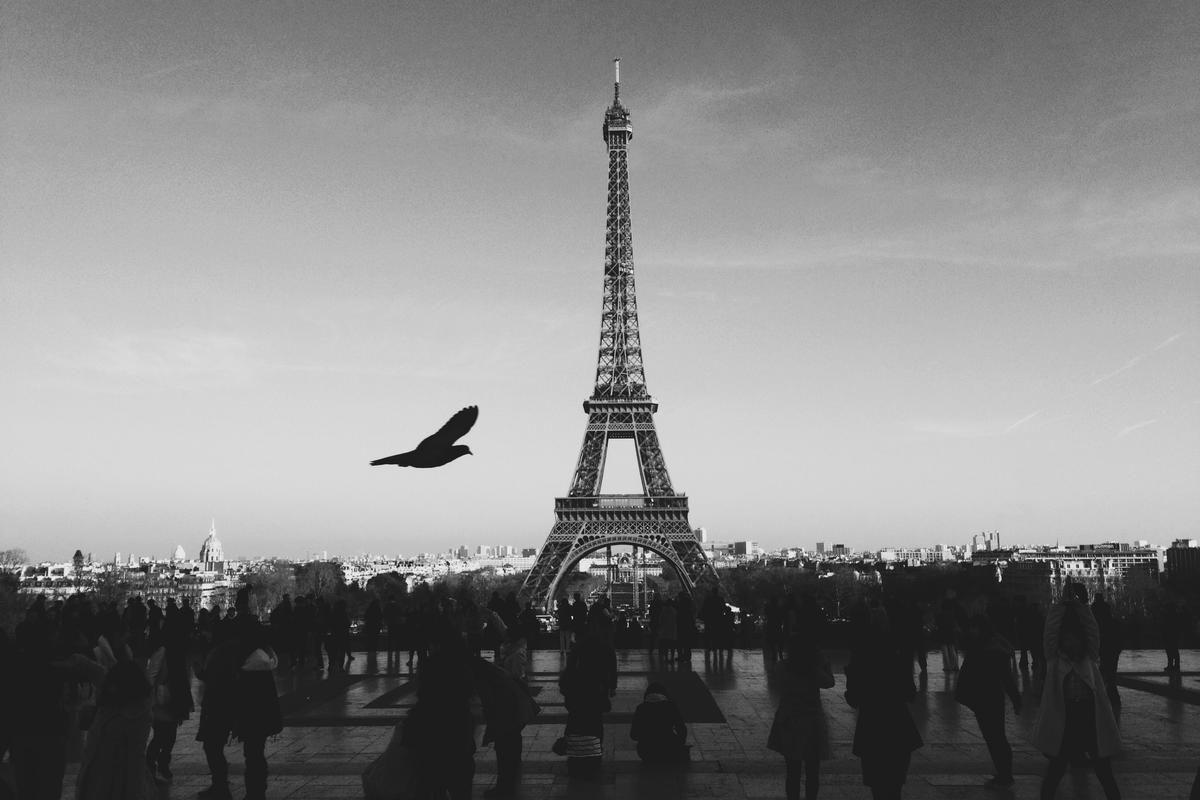 Eiffel Tower Black And White Photo