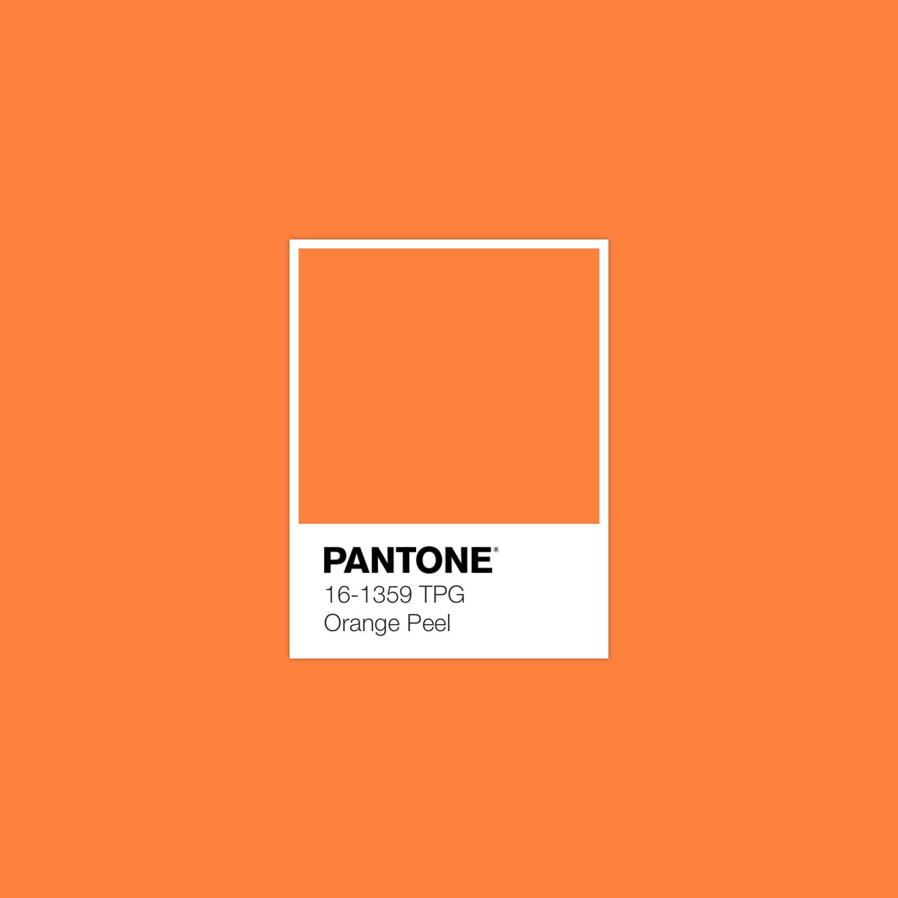Orangepeel Luxurydotcom Pantone Pantone Color Chart Pantone Orange Pantone Color