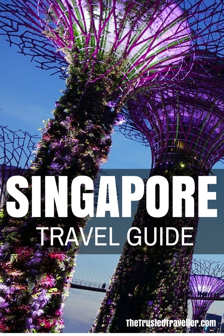 My Singapore Travel Guide has everything you need to start planning your trip. Click through now to start planning! – The Trusted Traveller