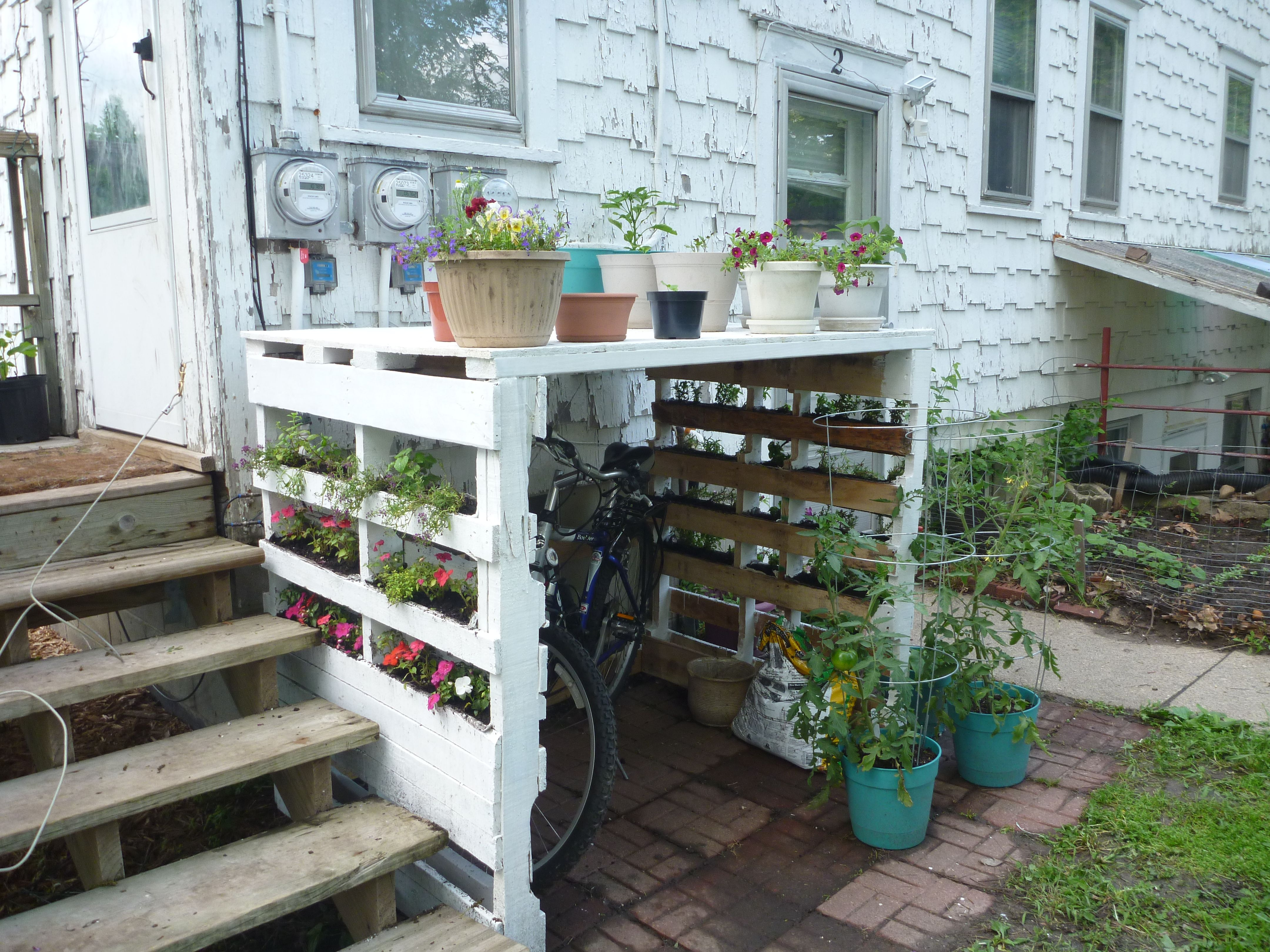 I Took The Pallet Garden Idea And Built Myself A Bike Rack The Plants Are Much Bigger Now Jardiniere En Palettes Abri Jardin Palettes Palette Jardin