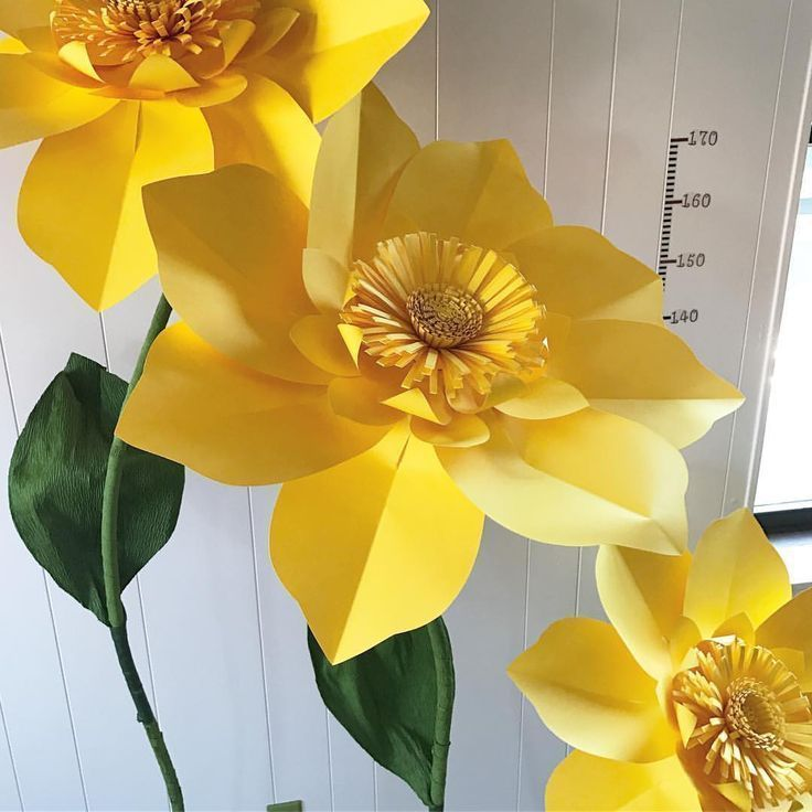 #paper #flowers #on #stems #big #large  2019  #paper #flowers #on #stems #big #large  The post #paper #flowers #on #stems #big #large  2019 appeared first on Paper ideas. #constructionpaperflowers #paper #flowers #on #stems #big #large  2019  #paper #flowers #on #stems #big #large  The post #paper #flowers #on #stems #big #large  2019 appeared first on Paper ideas. #constructionpaperflowers #paper #flowers #on #stems #big #large  2019  #paper #flowers #on #stems #big #large  The post #paper #flo #bigpaperflowers
