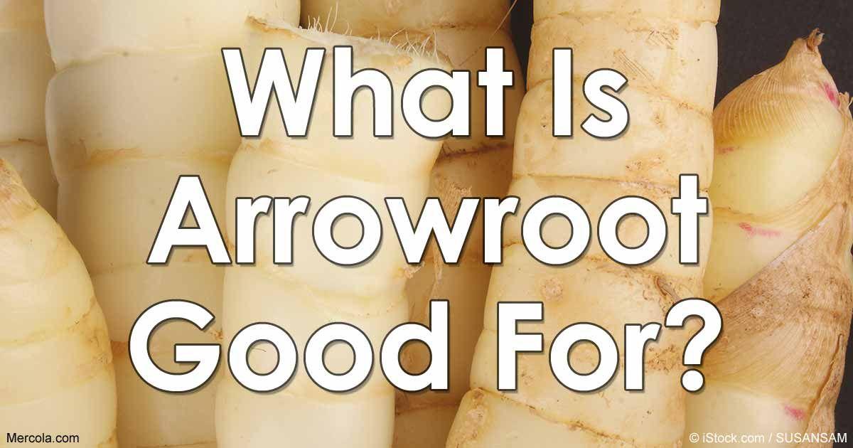 Arrowroot for nausea