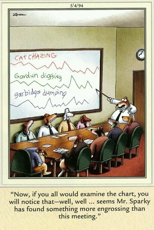 30 Of The Best Far Side Cartoons Of All Time | Gary Larson ...