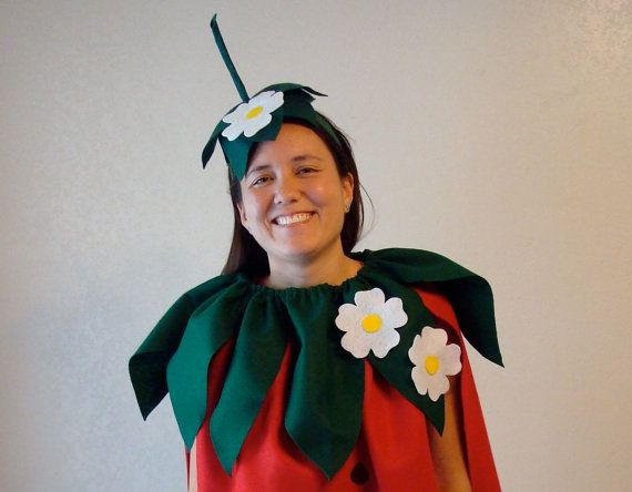 adult diy strawberry do it yourself adult costume. Black Bedroom Furniture Sets. Home Design Ideas