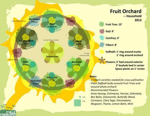 b8ff317bfcaa0185355c578bb703137d map for a home fruit orchard weekend casita garden pinterest,Home Orchard Design