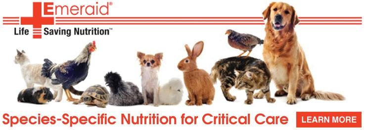 Emeraid products LafeberVet Animal behavior, Critical