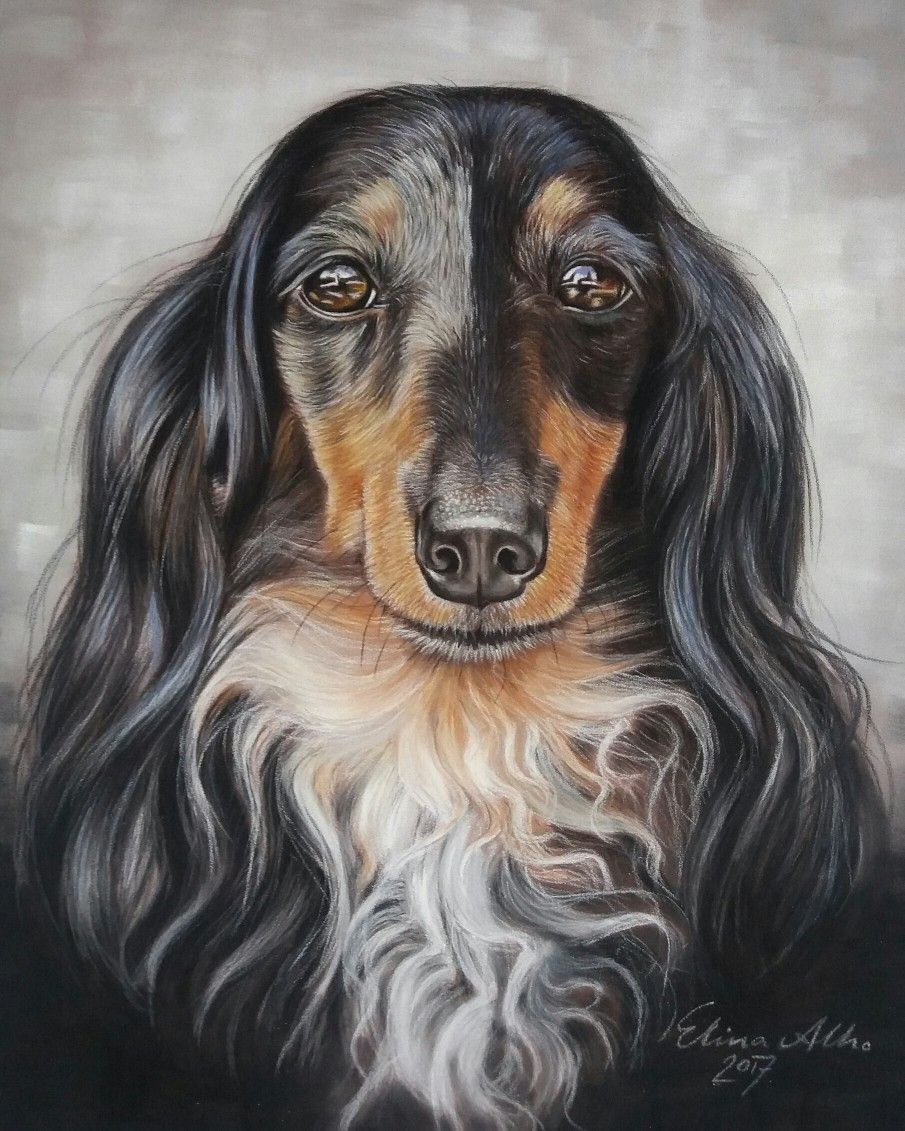 Pasteldrawing Weiner dog, Free food, Healthy food list