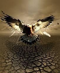 art eagle - Szukaj w Google