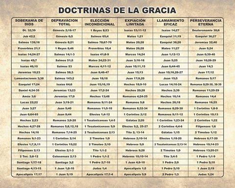 Doctrinas De La Gracia Teologia Reformada Sana Doctrina Salmo 139