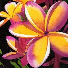 Image result for frangipani paintings