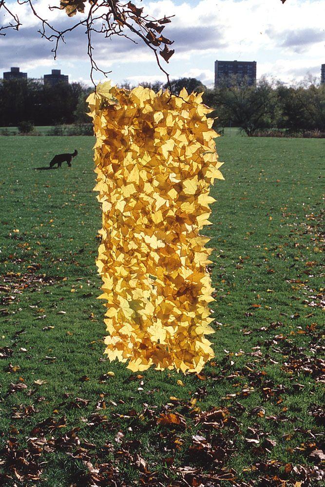 Yellow leaf sheet