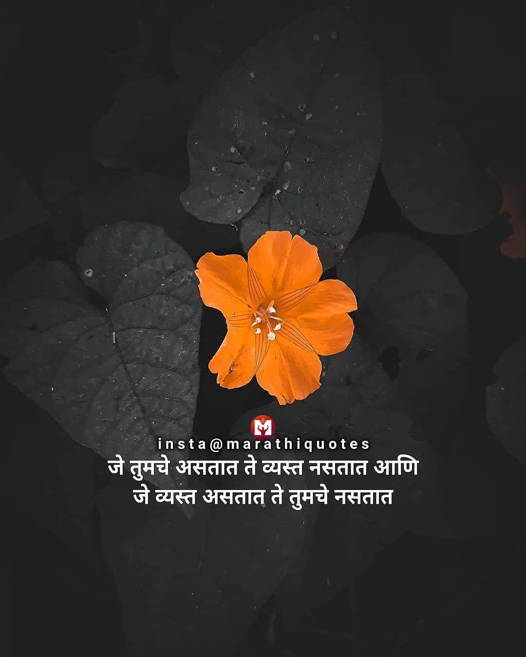 Pin on Marathi Quotes
