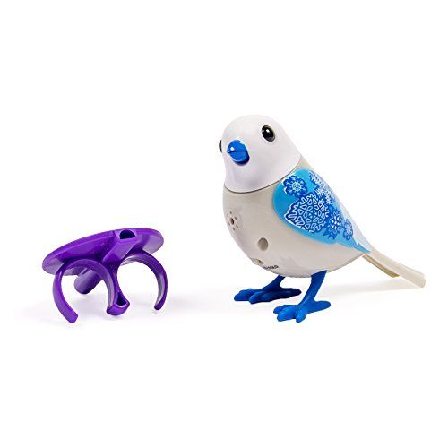 Amazon Com Digibirds Single Pack White Toys Games