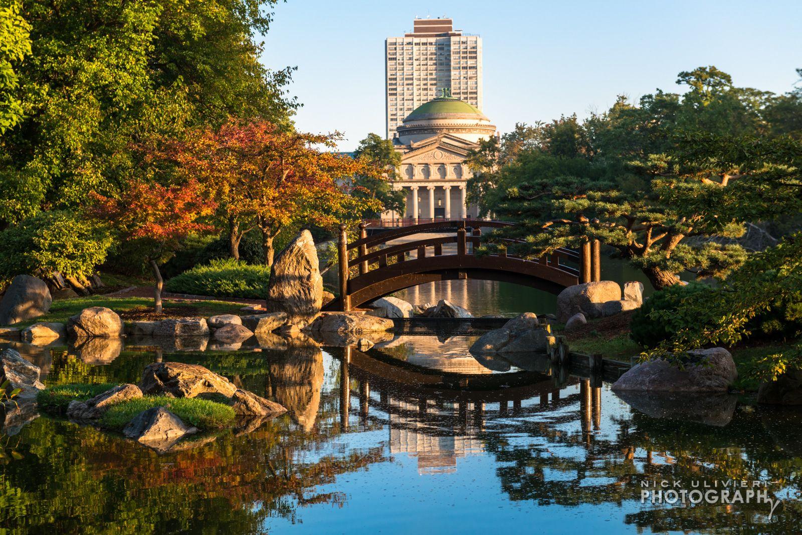 Osaka Garden   Places to go: Chicago Edition   Pinterest   Osaka and ...