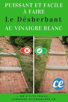 Puissant Et Facile A Faire Le Desherbant Maison Au Vinaigre Blanc Desherbant Maison Vinaigre Blanc Et Desherbant Vinaigre