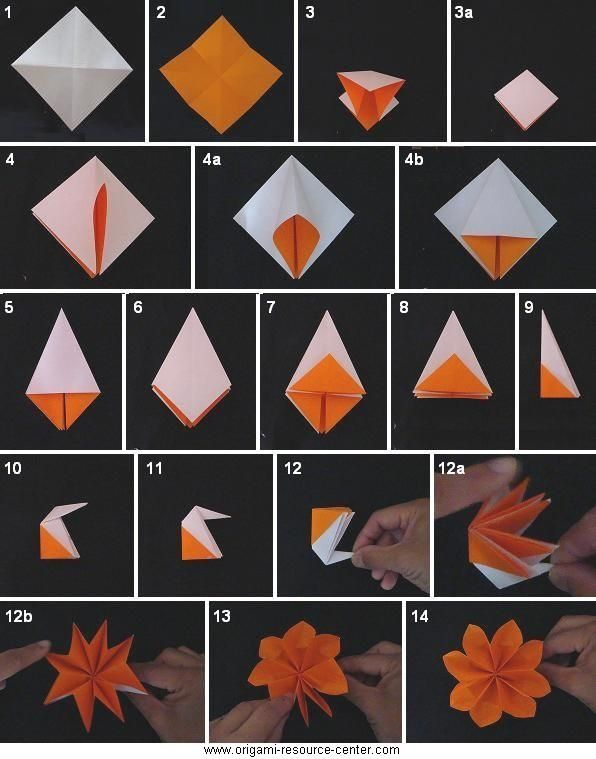 Origami Flower Instructions Origami Pinterest Origami Origami