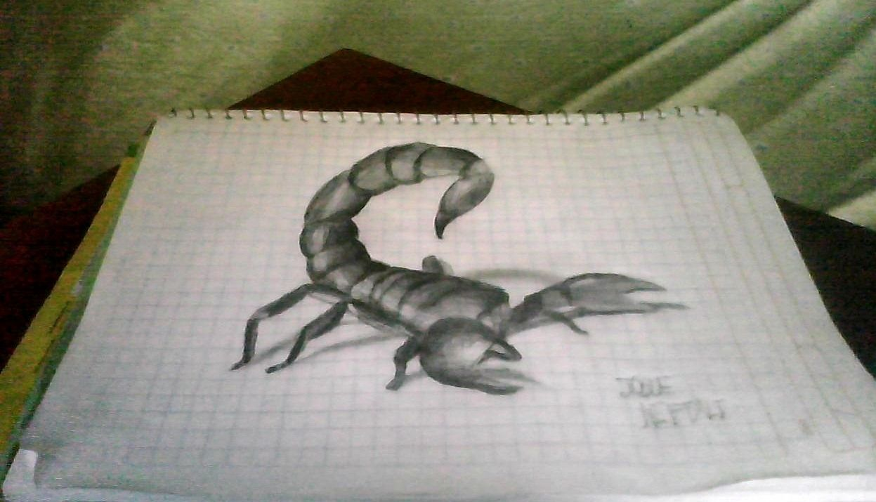 Escorpion Dibujos En 3d Esplendido Dibujos 3d Dibujos