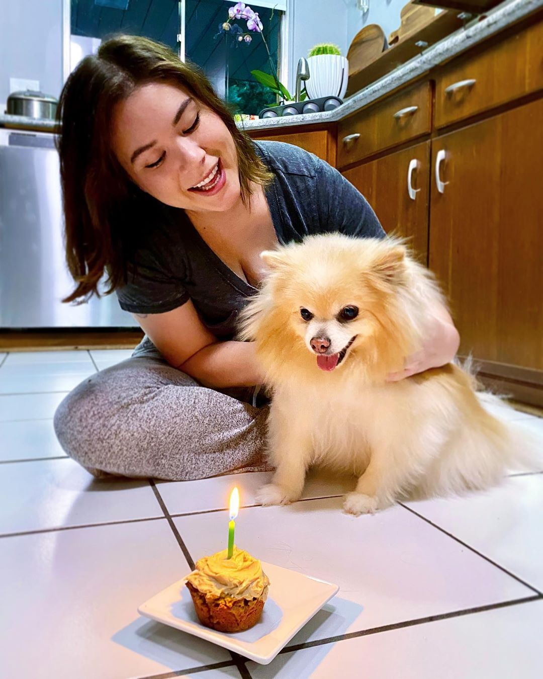 Pin By Scott Crook On Talia Lin In 2020 Happy Birthday Pupcakes Puppies Her birthday, what she did before fame, her family life, fun trivia facts, popularity rankings, and more. pin by scott crook on talia lin in 2020