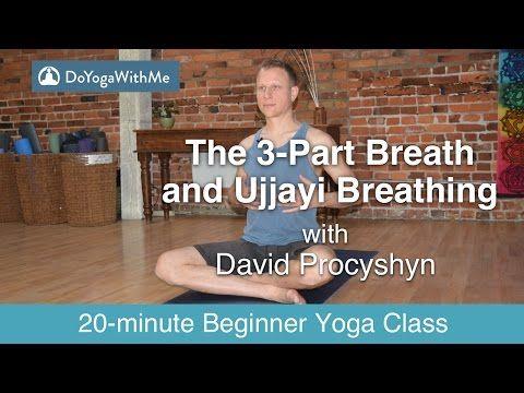 hatha yoga with david procyshyn the 3part breath and