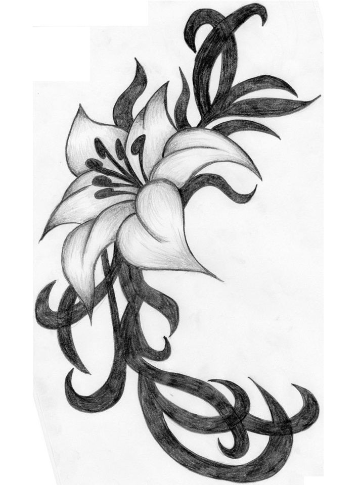 Tribal Lily Tattoos: Hibiscus Flower Tattoos, Lily
