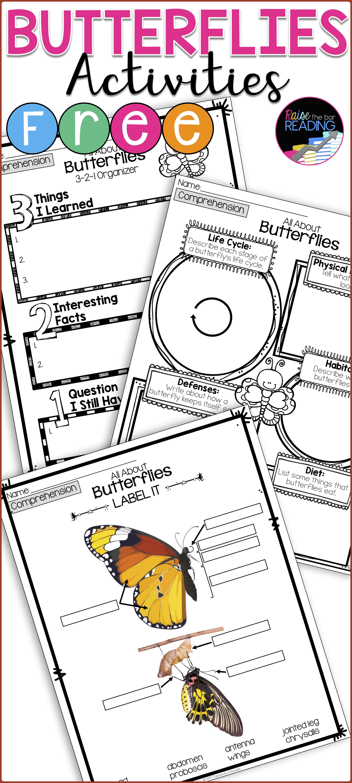 Free Butterflies Activities