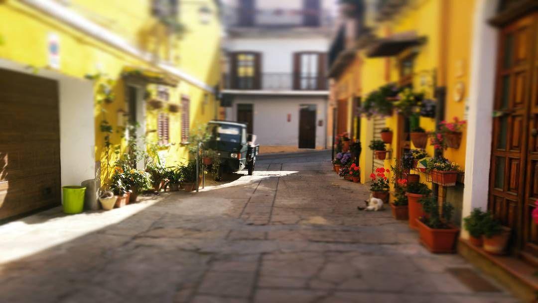 Photo giacomoscanu19 Use #sardiniain hashtag for your photos.