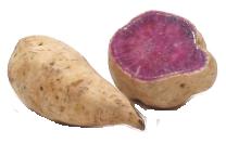 Online Edible Plants Sweet Potato To Yam Sweet Potato Yams Vs Sweet Potatoes Yams