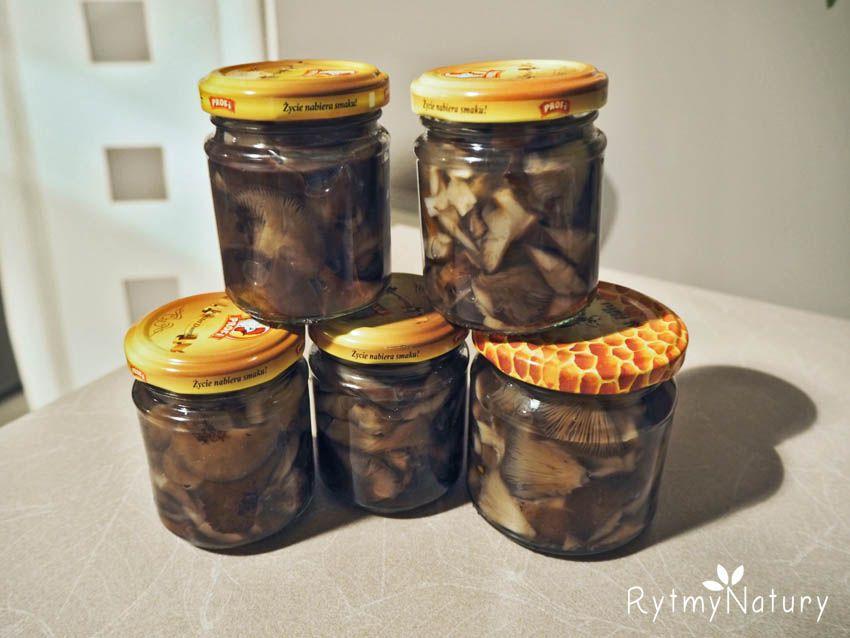 Opienki Marynowane W Naturalnym Occie Jablkowym Grzyby Rytmynatury Kuchnia Kulinaria Przepis Opienki Stuffed Peppers Salt And Pepper Shaker Mason Jars