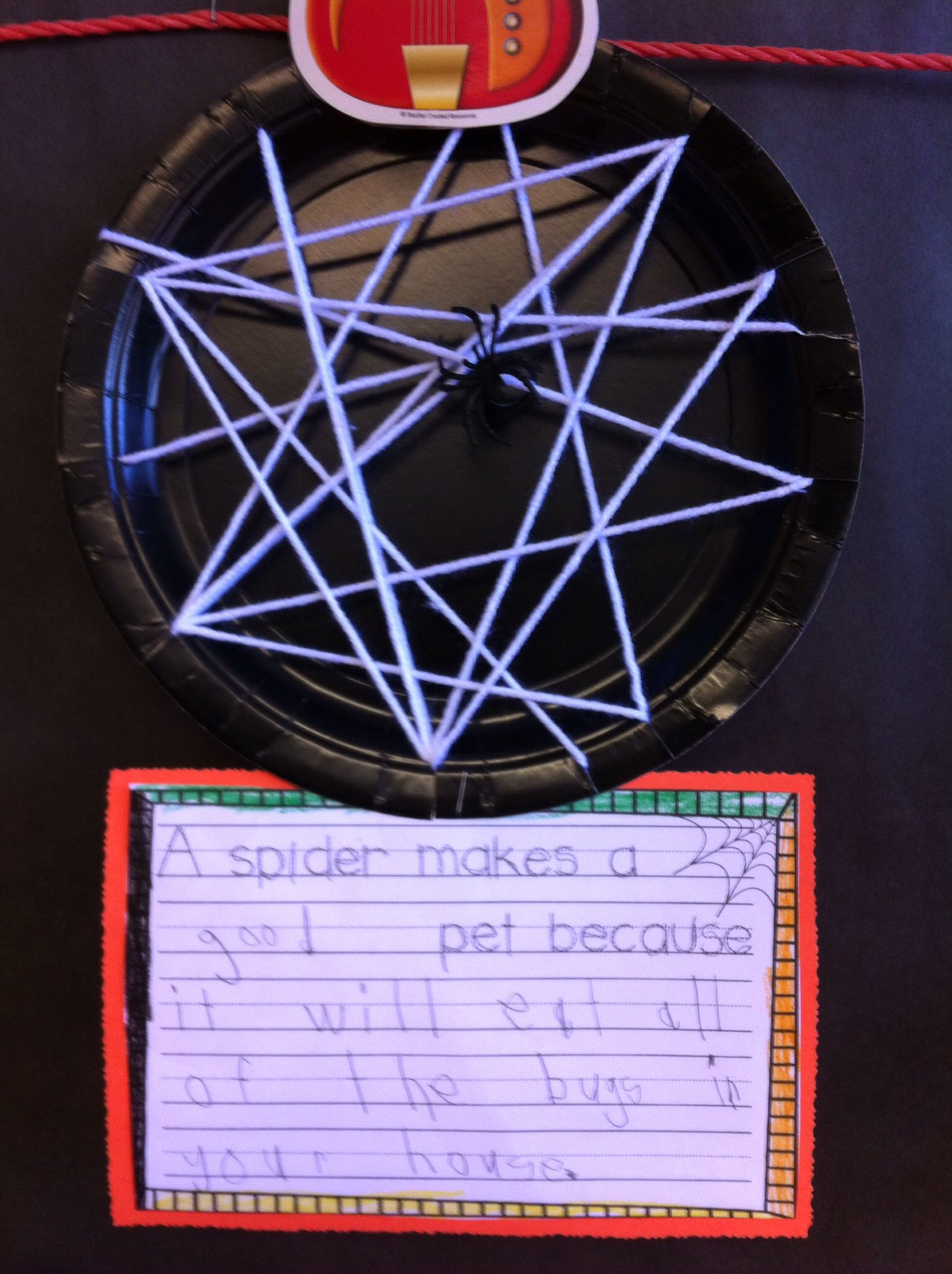 Spider Webs With Writing