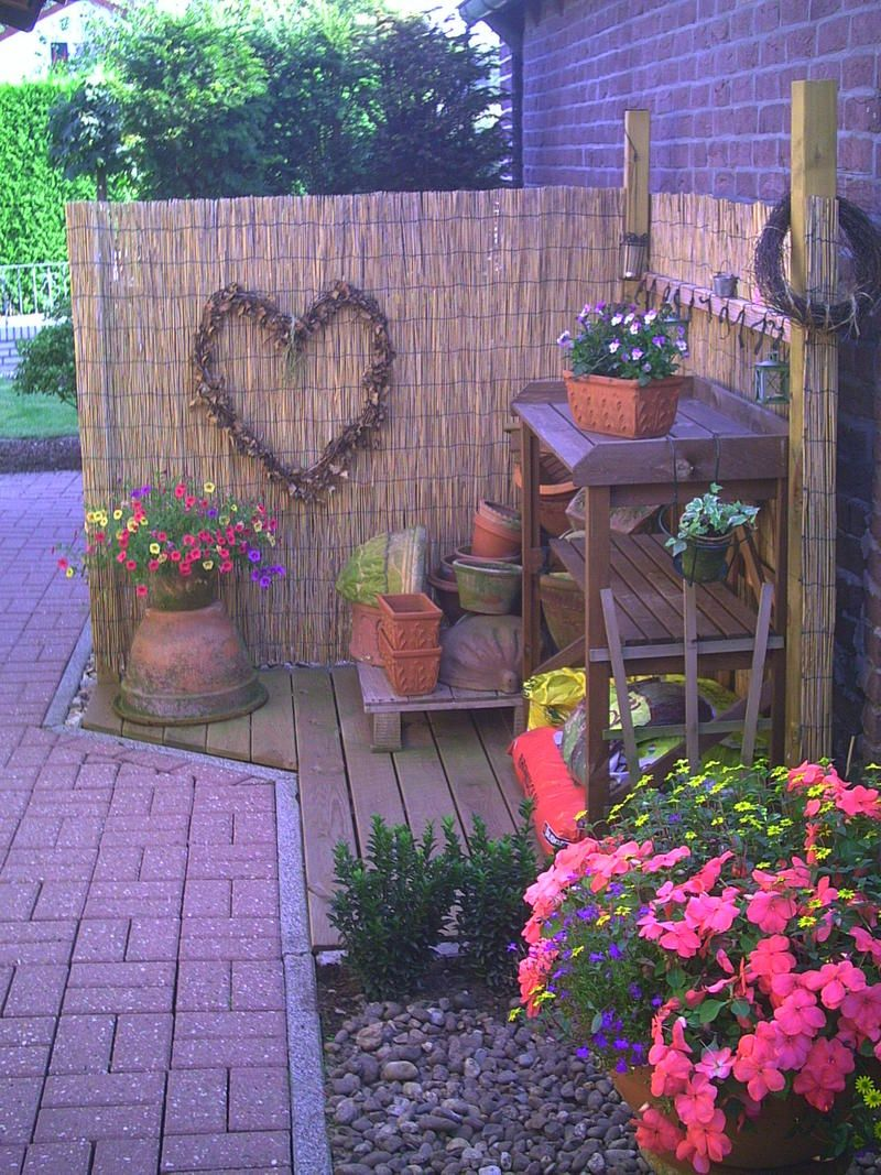 Mein Schöner Garten Forum Pin By Janine Henderson On Garden & Yard Ideas | Garden Yard Ideas, Plants, Garden