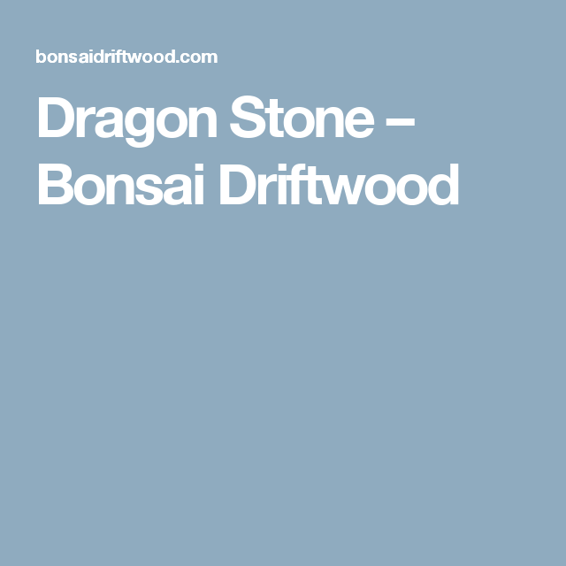 Dragon Stone Stone Dragon Bonsai