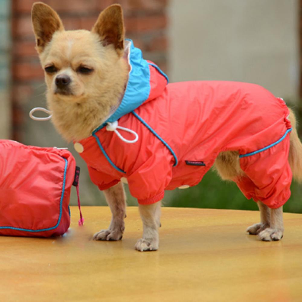 Bright Color Waterproof Dog Raincoat Price 12.99 & FREE