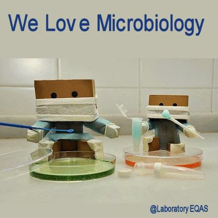 We Love Microbiology Amazing piece of laboratory artwork