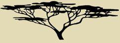The Flame Tree Restaurant / Muri / Rarotonga