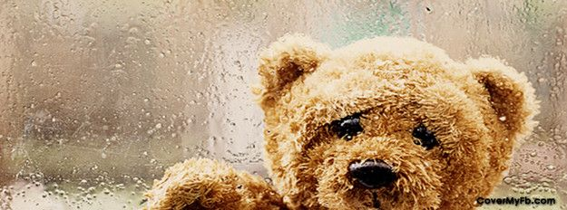 Sad Teddy Facebook Covers Sad Teddy Fb Covers Sad Teddy Facebook