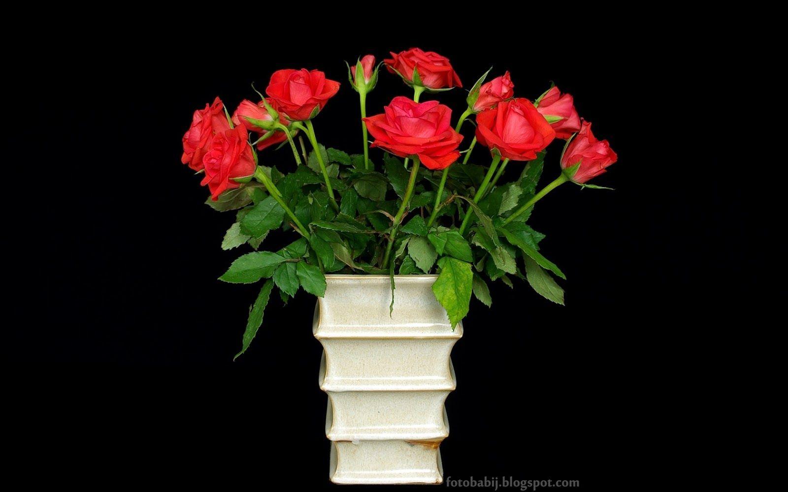 Tapety Na Pulpit 4k Ultra Hd Full Hd I Inne Rozdzielczosci Karminowe Roze Bukiet Plants
