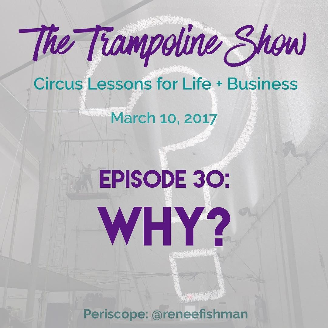 """This week: WHY?  Why should you start? Why should you persist? Why should you quit?  Why """"why?"""" is my favorite question. And more.  If you're wondering """"how is this related to trampoline?"""" There's only one way to find out.  Starting now...."""