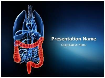 download our state-of-the-art colon ppt template. make a colon, Modern powerpoint