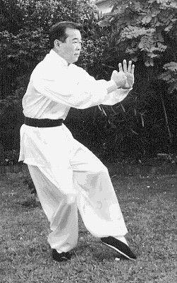 White Crane Kung Fu Martial Arts Chinese Martial Arts Tai Chi Qigong